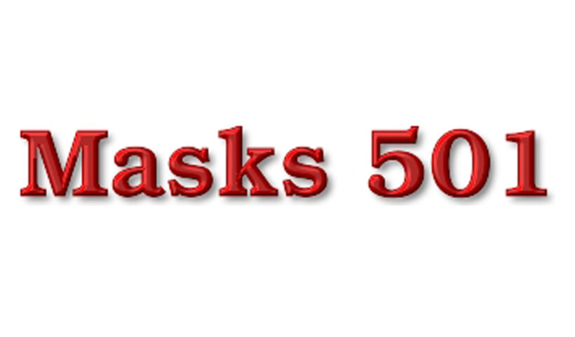 Mask 501
